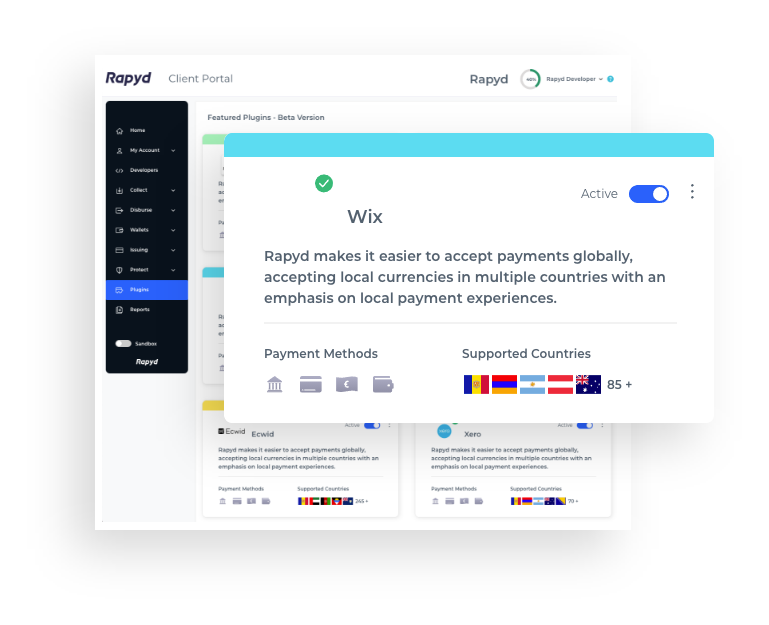 Get started with the International Wix Payment Plugin