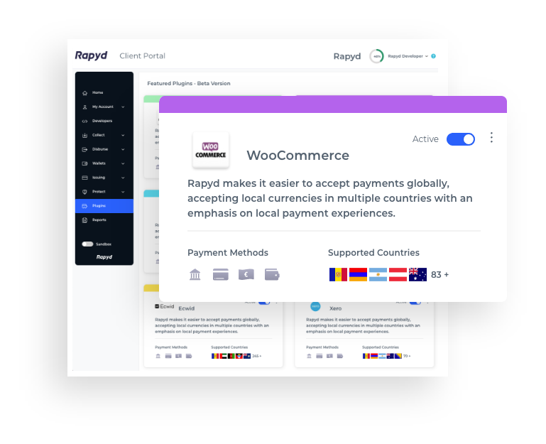 WooCommerce Payment Plugin for International Payments